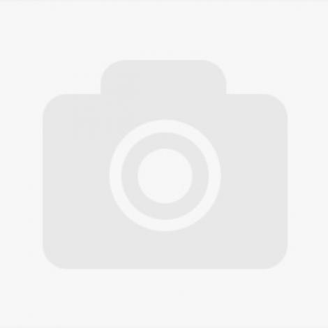 Manifestation des pompiers de Montluçon.